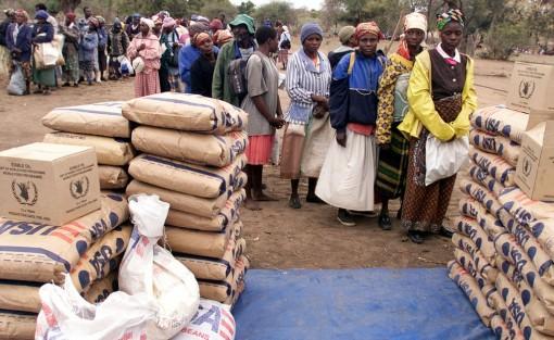 Cứu trợ lương thực khẩn cấp cho Zimbabwe trước đe doạ của nạn đói