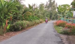 Nâng chất tiêu chí môi trường chuẩn nông thôn mới