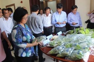 Phát động vận hành mô hình quản lý và truy xuất nguồn gốc rau, củ, quả