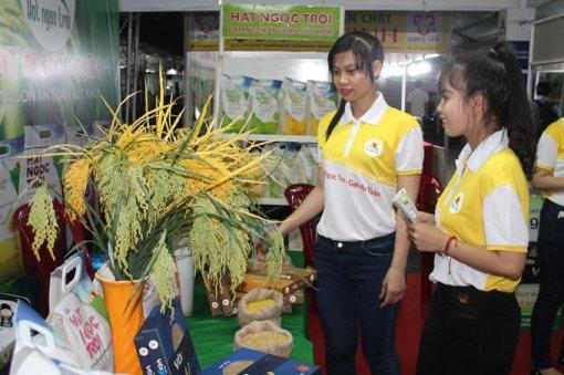 Khai mạc Festival lúa gạo và công bố logo thương hiệu gạo Việt