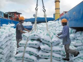 """Xuất khẩu gạo 1 năm """"được mùa"""""""