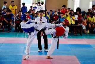 Taekwondo với nhiều kỳ vọng mới