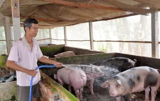 Phát huy vai trò nòng cốt của nông dân