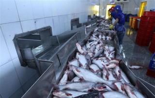 Kim ngạch xuất khẩu thủy sản 2 tháng đầu năm tăng 4,4%