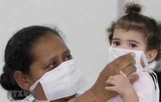 WHO: Thế giới 'không thể tránh khỏi' các đại dịch cúm mới