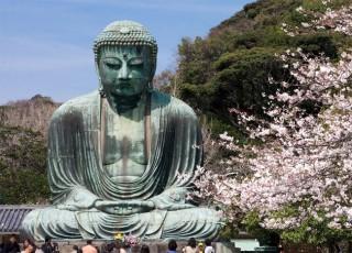 Hãy quên Tokyo đi, Nhật Bản còn vô số điểm đến tuyệt đẹp