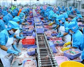 Việt Nam đứng thứ 4 thế giới về xuất khẩu thuỷ sản