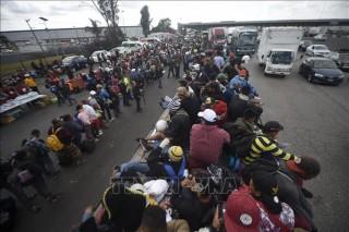 Khoảng 1.200 người di cư bắt đầu di chuyển từ Mexico tới Mỹ