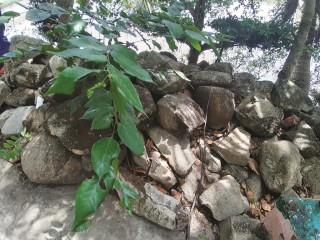 Truyền thuyết đá nổi