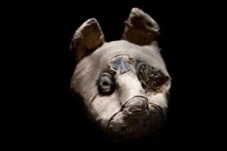 Bí ẩn những xác ướp mèo, chuột trong ngôi mộ cổ Ai Cập