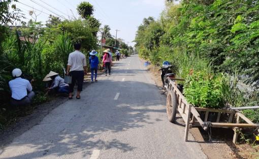 """""""Tuyến đường hoa""""  ở xã nông thôn mới Tây Phú"""
