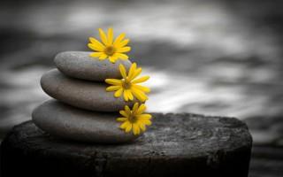 Sống trên đời, khắc cốt ghi tâm 10 điều này để luôn thanh thản, hạnh phúc