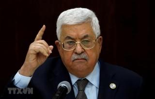 Tổng thống Palestine Abbas khẳng định sẵn sàng tổ chức tổng tuyển cử