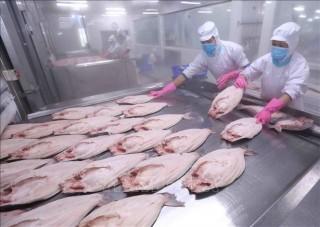 Những mặt hàng chiến lược của Việt Nam xuất khẩu sang châu Âu