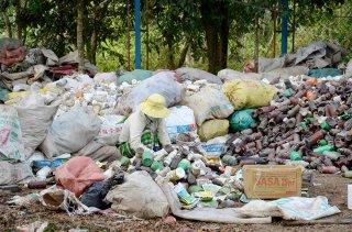 Thu gom, xử lý bao gói thuốc bảo vệ thực vật sau sử dụng