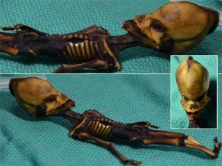 Giải mã bộ xương người ngoài hành tinh khiến thế giới sửng sốt