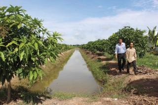 Chuyển dịch cây trồng, vật nuôi để tăng thu nhập