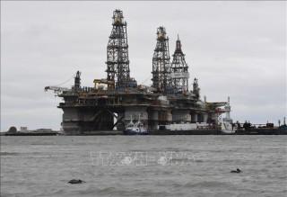 EIA hạ dự báo nhu cầu dầu thế giới trong năm 2019