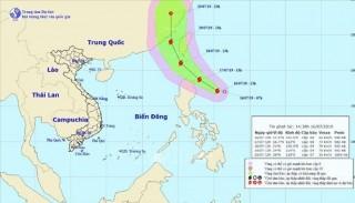 Các tỉnh, thành phố chủ động ứng phó với bão Danas