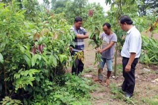 Đột phá của Hợp tác xã nông nghiệp Long Bình