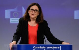 Liên minh châu Âu quyết tâm tránh cuộc chiến thương mại với Mỹ