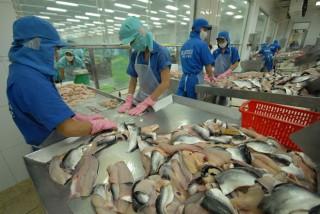 Giá tôm thẻ, cá tra đều giảm mạnh