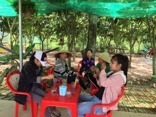 Phát triển mô hình trồng dâu tằm kết hợp dịch vụ