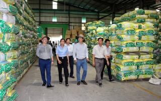 Thoại Sơn tập trung phát triển kinh tế - xã hội 3 tháng cuối năm 2019