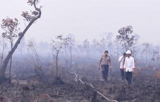 Nhiều trường học ở Indonesia tiếp tục đóng cửa do khói bụi cháy rừng