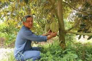 Xây dựng nông thôn mới ở huyện cù lao