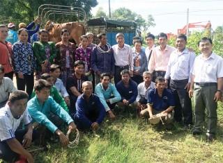 Hỗ trợ đồng bào dân tộc thiểu số phát triển chăn nuôi