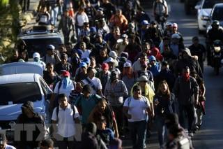 Mỹ siết chặt biên giới phía Tây Nam ngăn ngừa người di cư