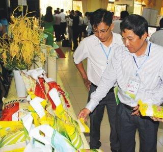 An Giang chuẩn bị tốt Diễn đàn Mekong Connect 2019