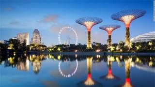 Siêu cây khổng lồ tạo 'thành phố trong vườn' ở Singapore
