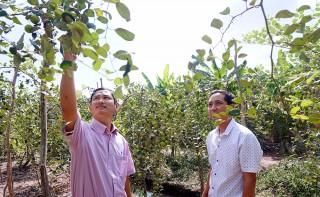 """Phú Tân phấn đấu hoàn thành mục tiêu """"Năm nông nghiệp"""""""