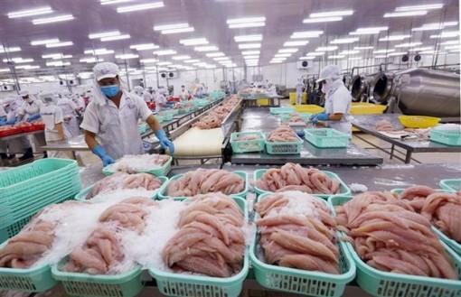 Xuất khẩu sang Mỹ - Cánh cửa lớn cho cá tra Việt Nam