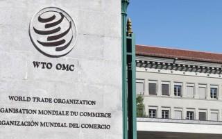 EU mong muốn đẩy mạnh cải cách Tổ chức Thương mại Thế giới