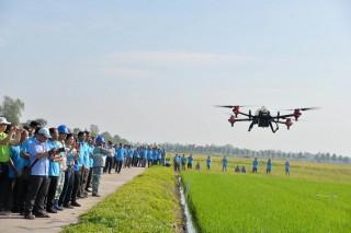 Trình diễn phun thuốc bảo vệ thực vật bằng thiết bị bay không người lái trên lúa