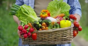 Chế độ ăn nền thực vật mang lại lợi ích gì cho sức khỏe?