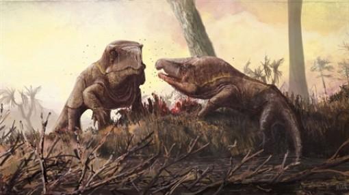 Quái vật ăn thịt kỳ dị, trông giống rồng Komodo