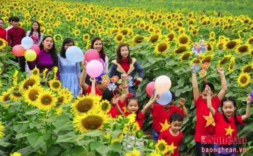 Lễ hội hoa hướng dương 2019 sẽ được tổ chức trong ba ngày