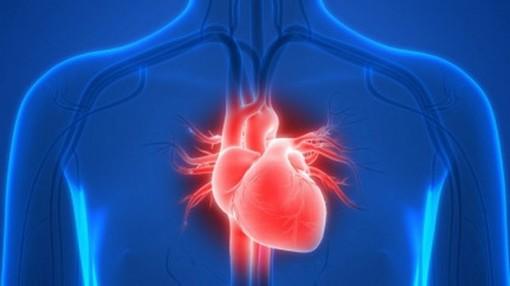 Phát triển thành công phương pháp điều trị đơn giản bệnh nhân suy tim