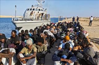 Hải quân Libya cứu trên 200 người di cư trên biển