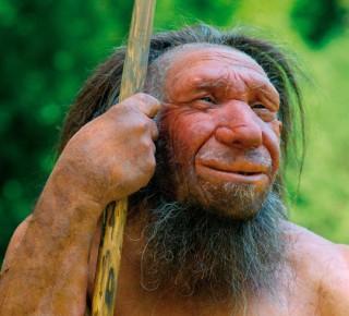 """Sốc với """"sinh vật mới"""" khiến 8 loài người khác tuyệt chủng"""