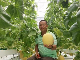 Khi nông dân ứng dụng công nghệ cao vào sản xuất