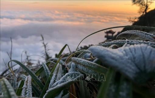 Đêm 5-12, vùng núi cao Bắc Bộ có băng giá và sương muối