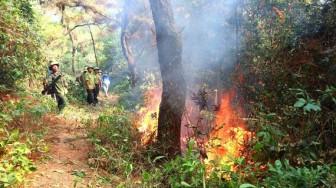 Nhiều nơi hanh khô, lo chống cháy rừng