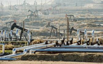 Giá xăng dầu hôm nay 12-12