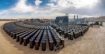 Giá xăng dầu hôm nay 16-12