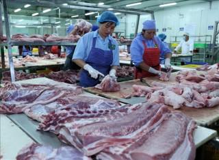 Bộ Công Thương lên tiếng khi giá thịt lợn trong nước liên tục tăng cao